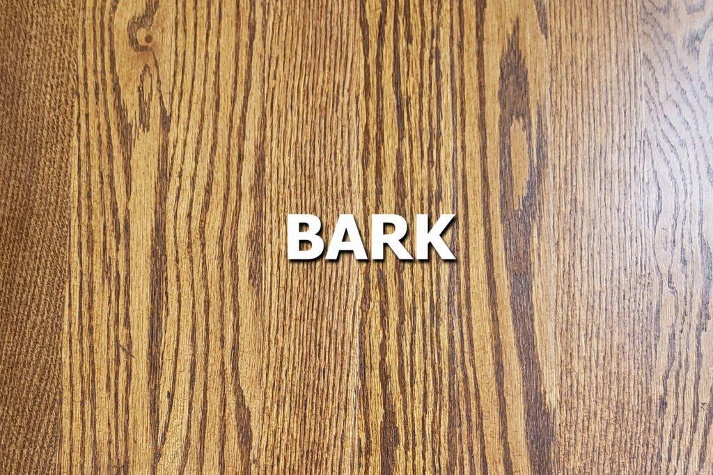bark sample stain